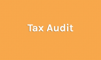 Tax audit report u/s 44AB - Has it travelled beyond business or profession?